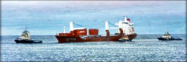 2012.12.24 - Cargo Vessel Grounded Minutes Before the Pilot Gets Onboard Figure 1