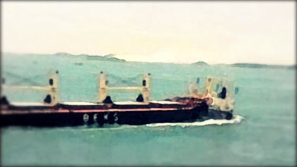 2013.03.05 - Bulk Carrier & Cargo Ship Collide in the Straits of Singapore