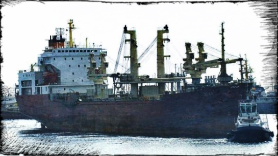 2013.04.04 - Paris MoU Detention Report for Cargo Ship MV Olga Figure 7