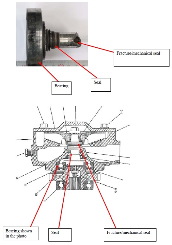Photo of detached shaft and schematic of the cooling pump