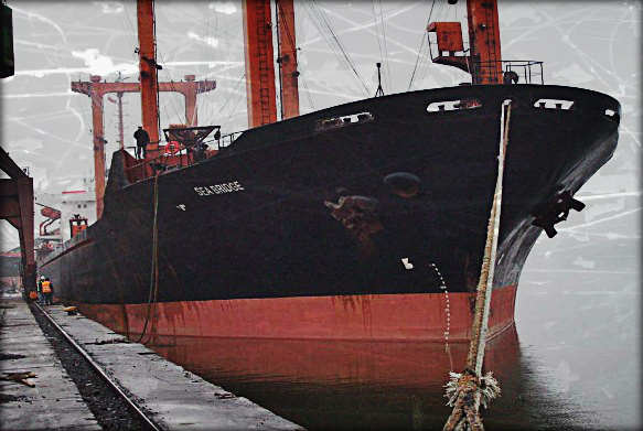 2013.09.19 - Paris MoU Detention Report for Bulk Carrier MV Sea Bridge Figure 1