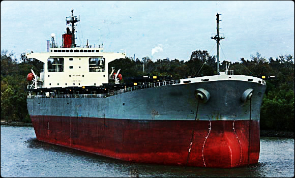2014.03.17 - Parana River Main Channel Blocked by Grounded Bulk Carrier Figure 1